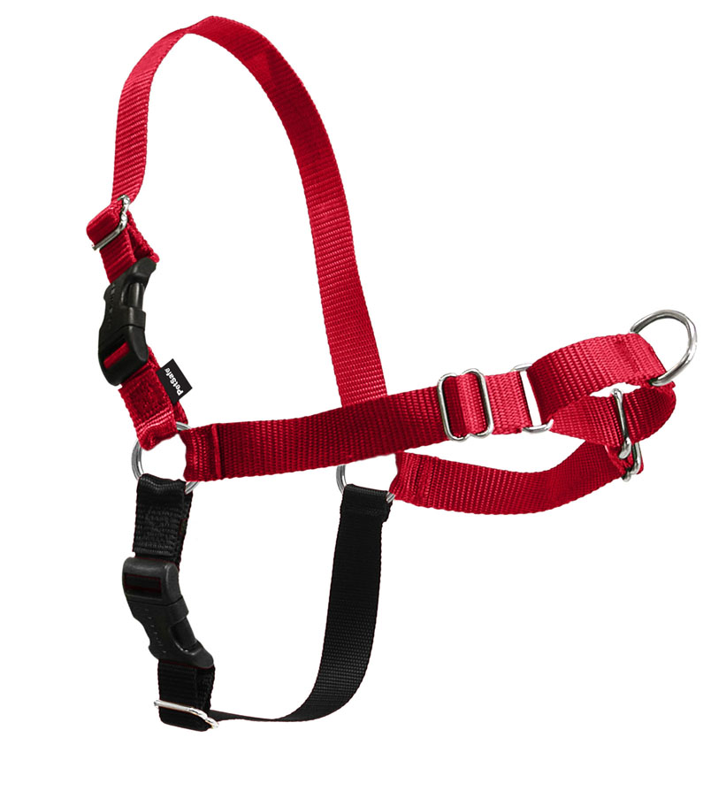 Easy Walk Dog Halter