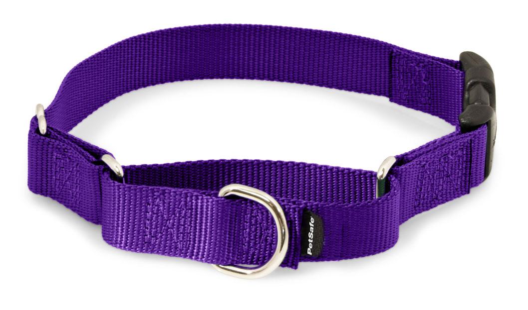Dog Collar Snap Buckle
