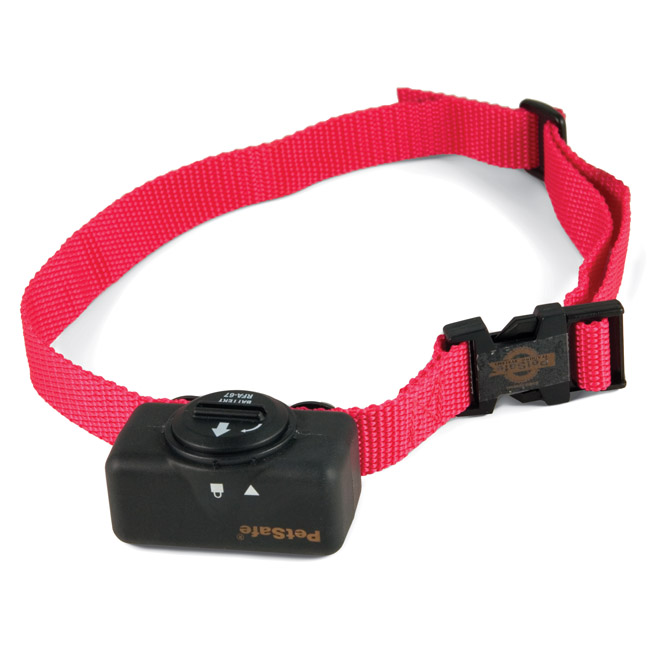 Best No Bark Dog Collar For Small Dogs