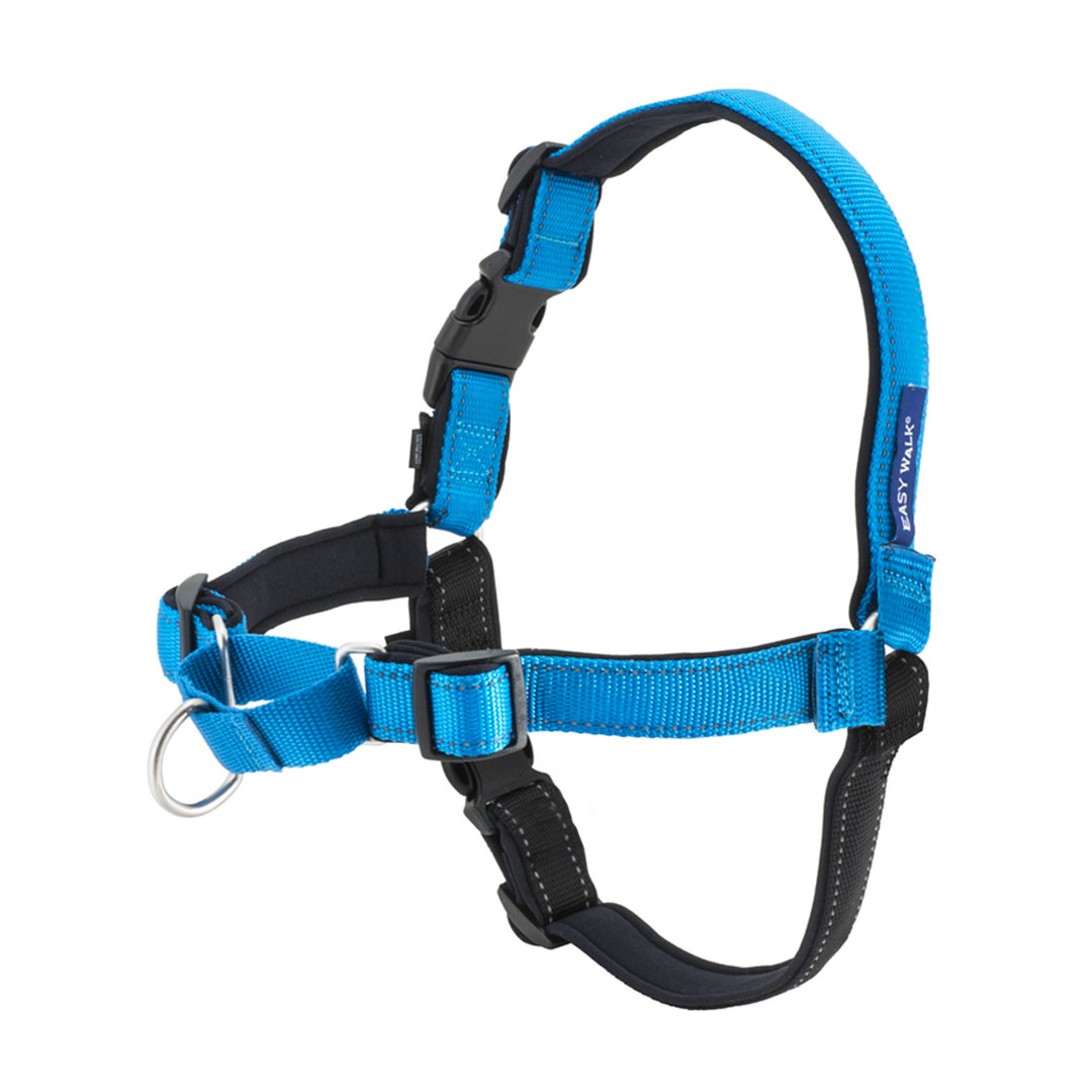 the harness Define harness harness synonyms, harness pronunciation, harness translation, english dictionary definition of harness n 1 the gear or tackle, other than a yoke.
