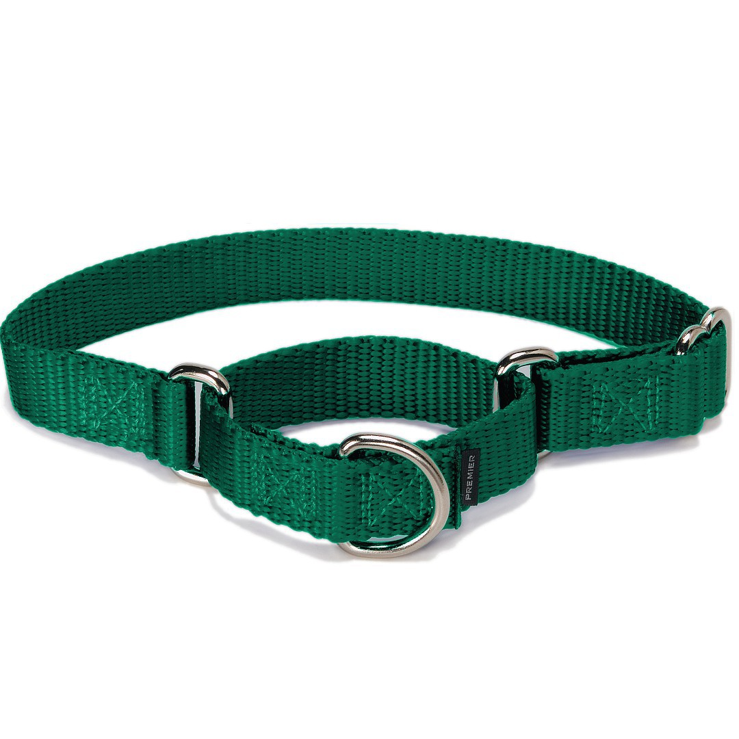 Pet Safe Dog Collar For Small Dogs