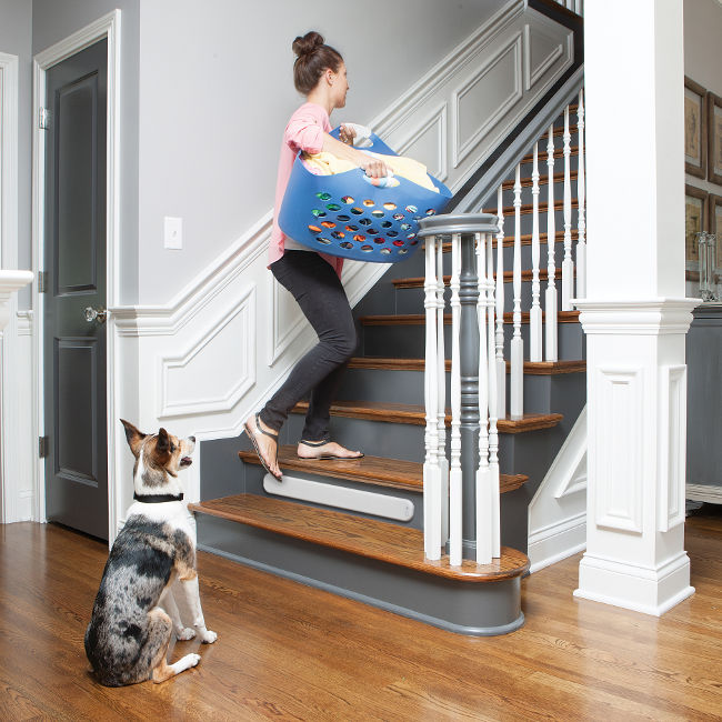 Pawz Away® Threshold Pet Barrier by PetSafe® - PWF00-14406